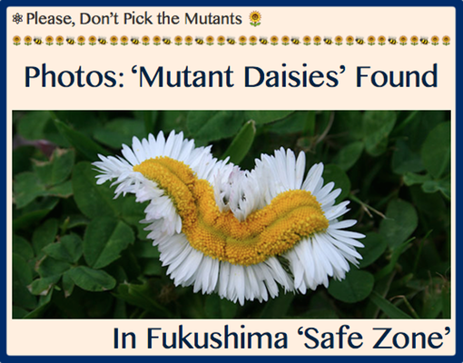 TITLE- Please, Don't Pick the Mutants